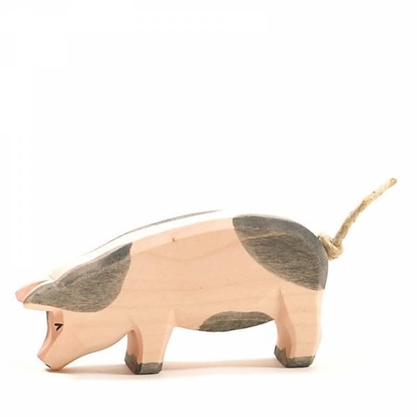 Schwein gefleckt tief