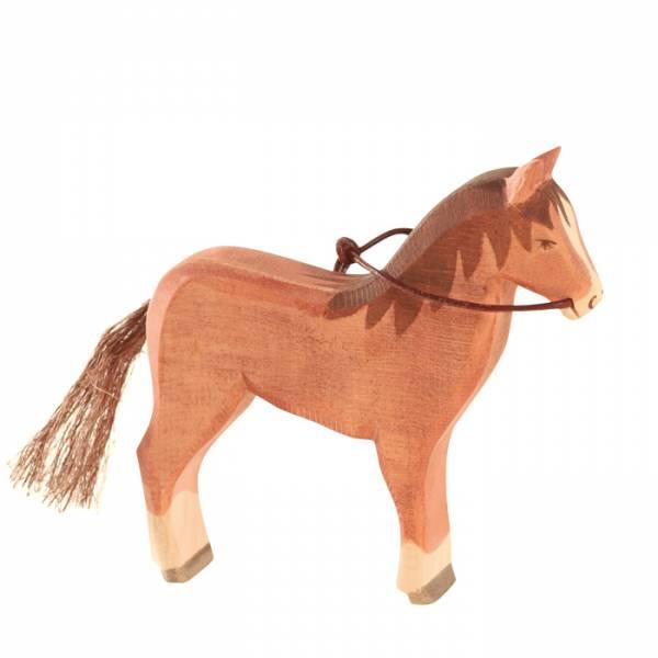 Ostheiner Pferd, braun